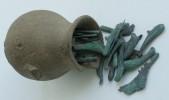 Клад из 200 ольвийских монет-дельфинов